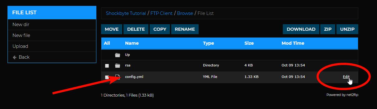 Setup Votifier - Config file