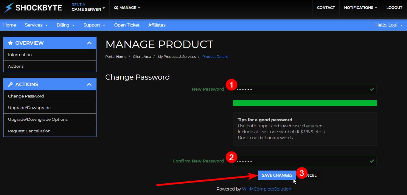 Reset Multicraft Password