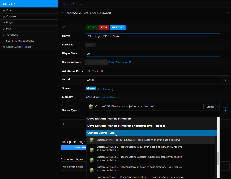 Minecraft Custom Server Type